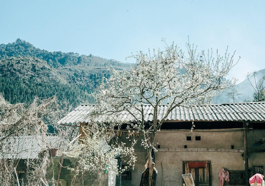 thị trấn cổ Phó Bảng